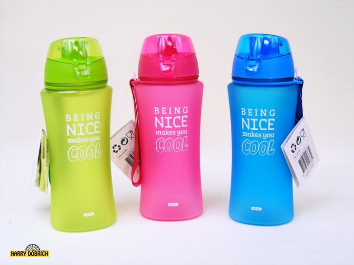 Trinkflasche 650ml Filter 4-fach sortiert