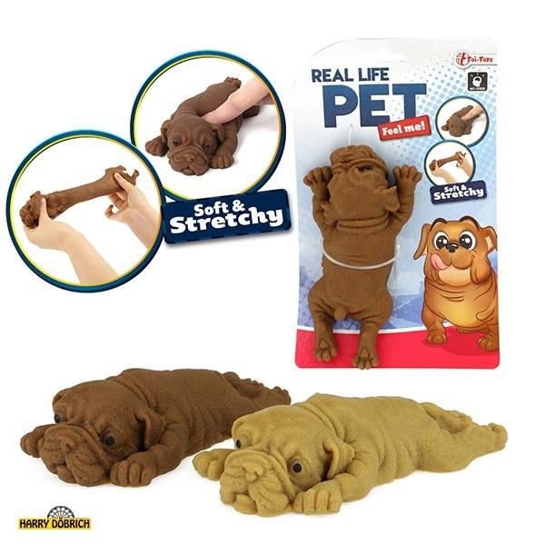 Fluffy Puffer Hund Bulldogge sortiert