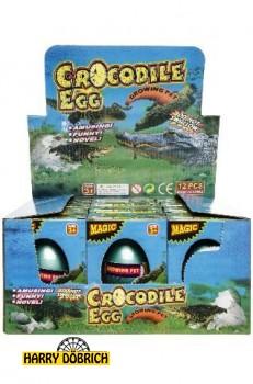 Wachsendes Ei Krokodil