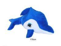 Delfin 170cm