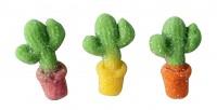 Yummi Kaktus 1kg